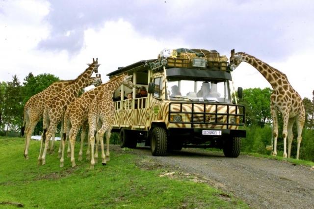Afrika News & Afrika Infos & Afrika Tipps @ Afrika-123.de | Serengeti-Park Hodenhagen