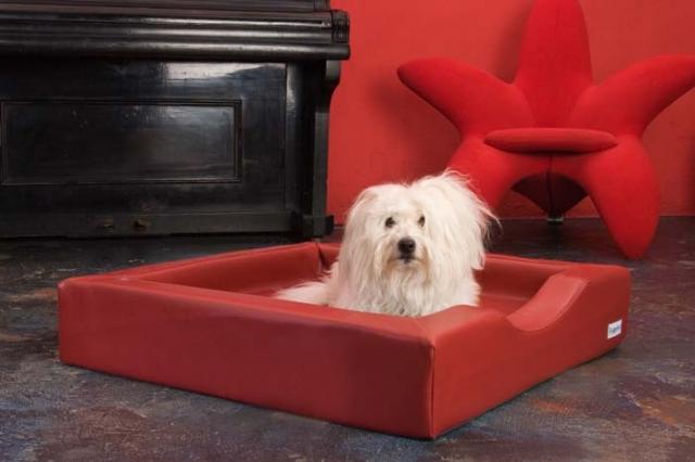 DoggyBed Hunde Komfortbetten
