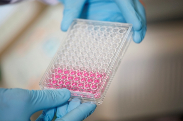 Testberichte News & Testberichte Infos & Testberichte Tipps | Biologische Heilmittel Heel GmbH