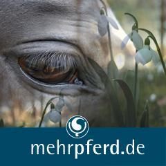 Landwirtschaft News & Agrarwirtschaft News @ Agrar-Center.de | Foto: mehrpferd.de Der Klick zu den Pferden.