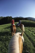 Landwirtschaft News & Agrarwirtschaft News @ Agrar-Center.de | Foto: Ausritt durch Südtirols schöne Bergwelt. Bildnachweis: Südtirol Marketing/Alessandro Trovati.