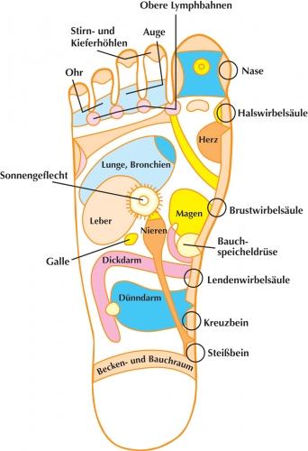 Kosmetik-247.de - Infos & Tipps rund um Kosmetik | Dorothea Küsters Life Science Communications GmbH
