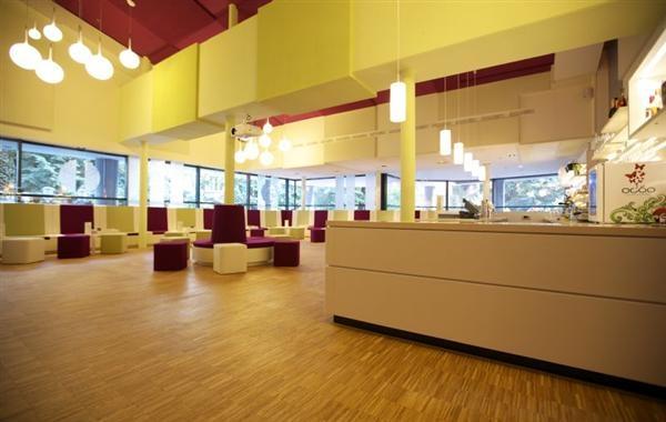 Potsdam-Info.Net - Potsdam Infos & Potsdam Tipps | IBSolution GmbH