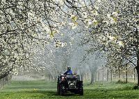Landwirtschaft News & Agrarwirtschaft News @ Agrar-Center.de | Foto: Babiel gewinnt Ausschreibung des BLE.