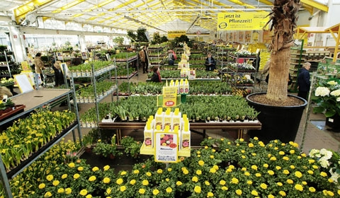 Pflanzen Tipps & Pflanzen Infos @ Pflanzen-Info-Portal.de | Gartencenter Mühlenweg