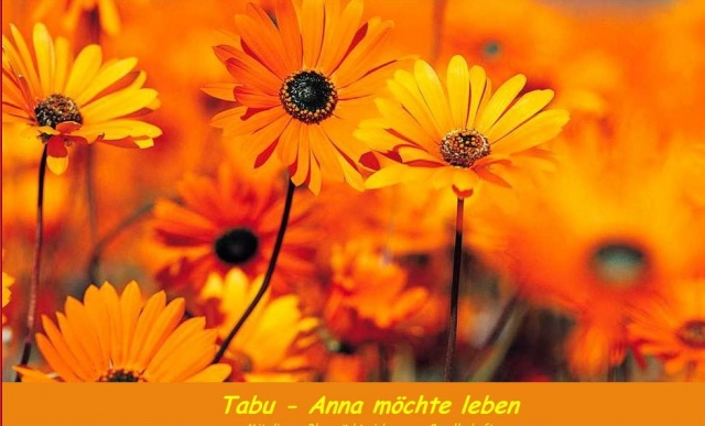 Pflanzen Tipps & Pflanzen Infos @ Pflanzen-Info-Portal.de | Theresia Maria Wuttke