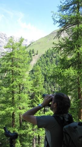 Rom-News.de - Rom Infos & Rom Tipps | Graubünden Ferien