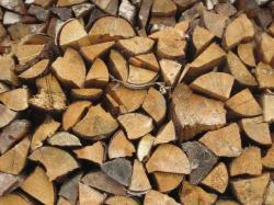Landwirtschaft News & Agrarwirtschaft News @ Agrar-Center.de | Agrar-Center.de - Agrarwirtschaft & Landwirtschaft. Foto: Holz verbrennt CO2-neutral. Es wird nur so viel Kohlendioxid in die Atmosphäre abgegeben wie der Baum zuvor beim Wachstum aufgenommen hat.
