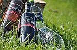 Neue Produkte @ Produkt-Neuheiten.Info | Foto: Tulpenwein vom Weingut Krenn.