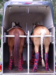 Testberichte News & Testberichte Infos & Testberichte Tipps | www.mit-pferden-reisen.de