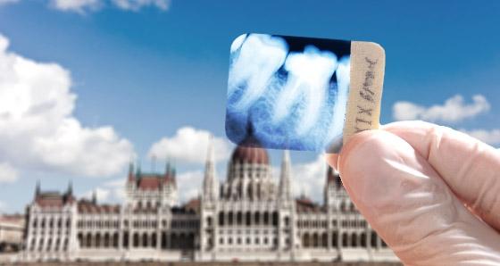 Polen-News-247.de - Polen Infos & Polen Tipps | Fachpraxis für Oralchirurgie Dr. Burg, Dr. Schmelzer + Partner