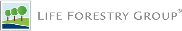 Asien News & Asien Infos & Asien Tipps @ Asien-123.de   Life Forestry Switzerland AG