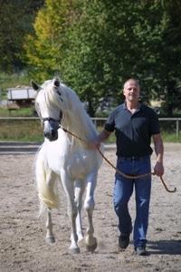 Stuttgart-News.Net - Stuttgart Infos & Stuttgart Tipps | equi-Com®  Was Manager von Pferden lernen können