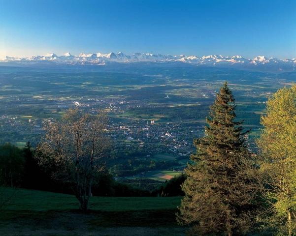 Auto News | Region Solothurn Tourismus