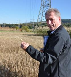 Landwirtschaft News & Agrarwirtschaft News @ Agrar-Center.de | Agrar-Center.de - Agrarwirtschaft & Landwirtschaft. Foto: Klaus Mastel begutachtet - vor dem Mähvorgang - die Versuchsfelder der Braugerste (2. Ernte), die auf Grund der zurückliegenden zwei sehr trockenen Spätsommermonate (August und September 2009) zurückgeblieben waren. (Foto: Proplanta).