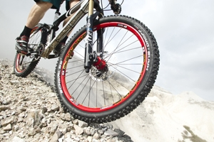 Auto News | pressedienst-fahrrad GmbH