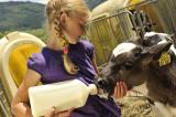 Landwirtschaft News & Agrarwirtschaft News @ Agrar-Center.de | Foto: Aktive Hofarbeit ist auf vielen Bauernhöfen möglich.