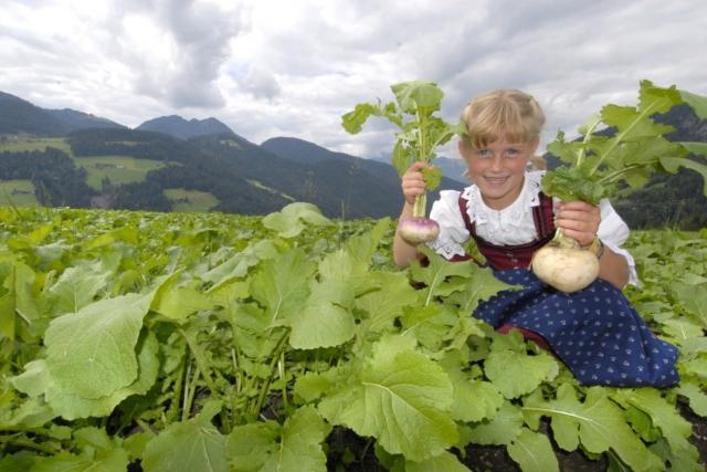 Restaurant Infos & Restaurant News @ Restaurant-Info-123.de | Tourismusinformation Wildschönau