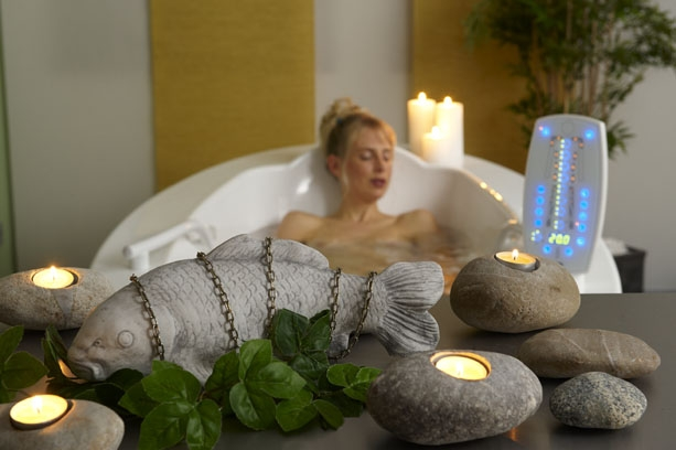 Hotel Infos & Hotel News @ Hotel-Info-24/7.de | Best Western Premier Vitalhotel Bad Sachsa