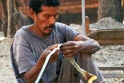 Landwirtschaft News & Agrarwirtschaft News @ Agrar-Center.de | Agrar-Center.de - Agrarwirtschaft & Landwirtschaft. Foto: Ein Totobiegosode Mann. Der Wald der Totobiegosode wird illegal von brasilianischen Viehzüchtern zerstört. © Survival.