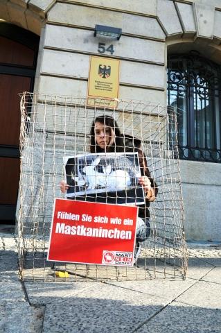 Sport-News-123.de | Deutscher Tierhilfe Verband beteiligt sich an Tierschutz-Aktion
