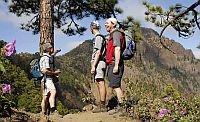 Europa-247.de - Europa Infos & Europa Tipps | Aufstieg zum Bejenado, La Palma