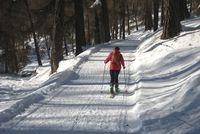 kostenlos-247.de - Infos & Tipps rund um Kostenloses | Winterzauber: Almrausch-Gäste können auf einer Skitour tief in die verschneite Natur des Vinschgaus eintauchen.