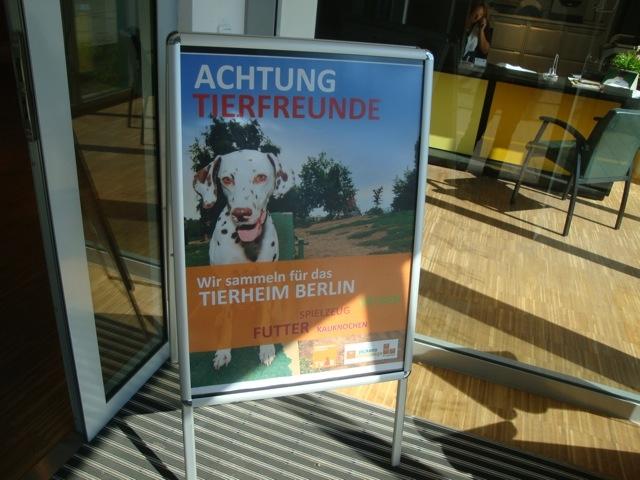 Sport-News-123.de | Sammelaktion für Tierschutzvereine Berlin und Hamburg