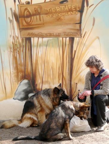 Berlin-News.NET - Berlin Infos & Berlin Tipps | Frau sitzt mit Hund vor der Ausgabestelle der Tiertafel