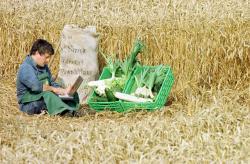 Landwirtschaft News & Agrarwirtschaft News @ Agrar-Center.de | Foto: In der modernen Landwirtschaft spielt Computertechnik inzwischen eine wichtige Rolle. Foto: Stefan Kiefer, www.stefankiefer.com.