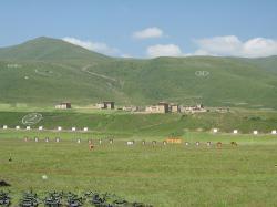Ost Nachrichten & Osten News | Foto: Militärischen Stellungen für die Übungen auf dem Grasland bei Ngaba.