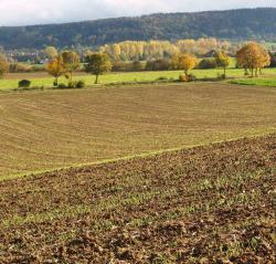 Landwirtschaft News & Agrarwirtschaft News @ Agrar-Center.de | Agrar-Center.de - Agrarwirtschaft & Landwirtschaft. Foto: Auch Ackerschläge können mit dem neuen Landvermessungsportal erfasst werden (Foto: Proplanta).