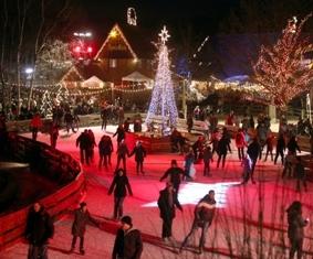 Kanada-News-247.de - Kanada Infos & Kanada Tipps | Blick auf die festlich beleuchtete Winter-Zoo-Eislaufbahn auf Meyers Hof