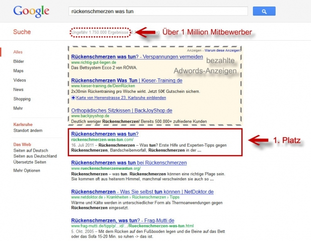 Flatrate News & Flatrate Infos | Google Platz 1 für Projekt Rückenschmerzen was tun