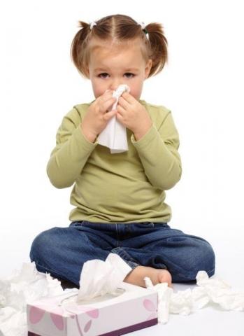 Kiel-Infos.de - Kiel Infos & Kiel Tipps | Belastete oder  zu trockene Raumluft kann zu allergischen Reaktionen oder unangenehmen Auswirkungen auf die Atemwege führen.