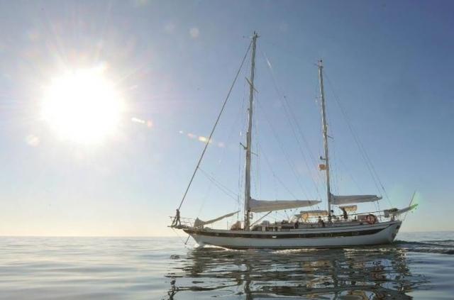 Australien News & Australien Infos & Australien Tipps | Alle Mann an Bord:
