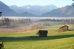 Wellness-247.de - Wellness Infos & Wellness Tipps | Mooslandschaft im Herbst