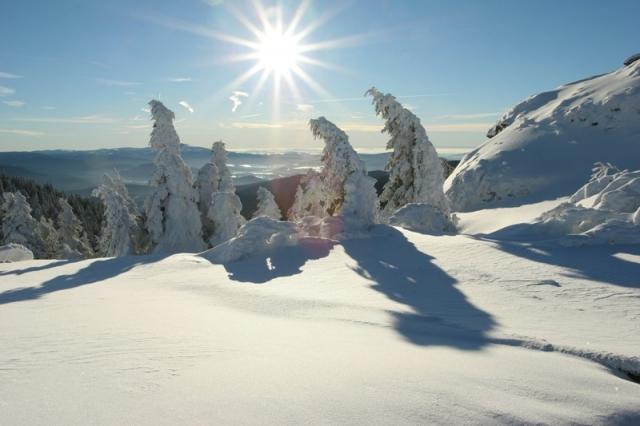 Wellness-247.de - Wellness Infos & Wellness Tipps | Winterzauber auf dem Großen Arber im Bayerischen Wald
