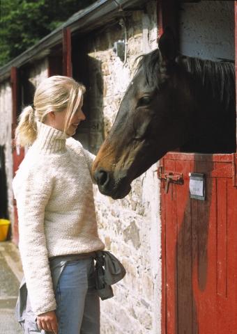 Tier Infos & Tier News @ Tier-News-247.de | Eigenes Pferd am Ferienhaus