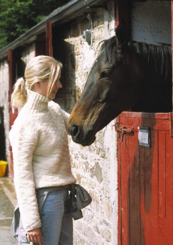 Europa-247.de - Europa Infos & Europa Tipps | Eigenes Pferd am Ferienhaus