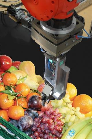 Technik-247.de - Technik Infos & Technik Tipps | Griff in die (Obst-) Kiste