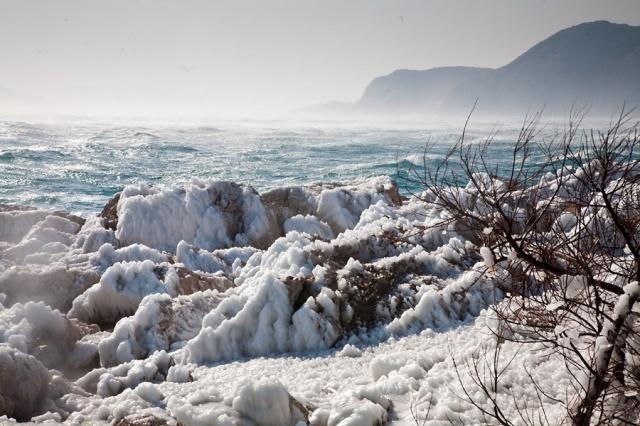 App News @ App-News.Info | Winterhilfe von SeaHelp