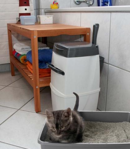 Duesseldorf-Info.de - Düsseldorf Infos & Düsseldorf Tipps | Ein spezieller Katzenstreu-Entsorgungseimer macht Katzenbesitzern jetzt das Leben leichter