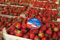 Nahrungsmittel & Ernährung @ Lebensmittel-Page.de | Lebensmittel-Page.de - rund um Ernährung, Nahrungsmittel & Lebensmittelindustrie. Foto: Weihenstephan Qualität für jeden Tag: Der >> Feine Fruchtjoghurt mit ausgewählten Früchten << mit 3,5% Fett im Milchanteil.