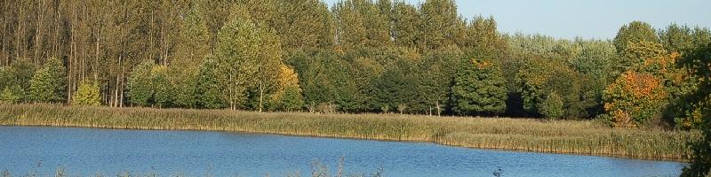 Barbara Hendricks (SPD), Umwelt- und Bauministerin, zur Nitratbelastung von Grundwasser und Flüssen: ''Die intensivierte Landwirtschaft kommt uns immer wieder teuer zu stehen''!