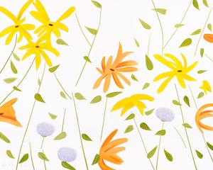 Alex Katz: Summer Flowers 2 | Freie-Pressemitteilungen.de