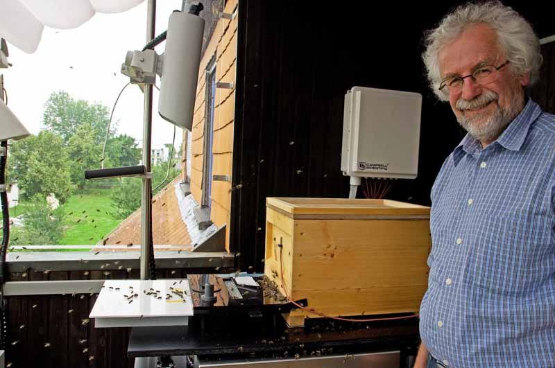 Tier Infos & Tier News @ Tier-News-247.de | Prof. Tautz leitet das HOBOS-Projekt an der Universitaet Wuerzburg