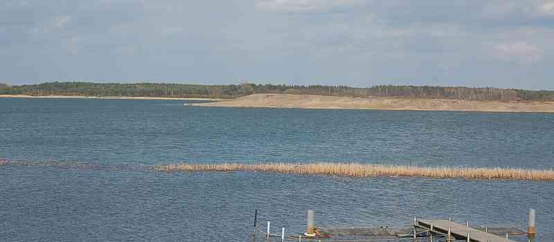 Steffi Lemke, naturschutzpolitische Sprecherin der Grünen-Fraktion, wirft der Bundesregierung vor, nicht gegen den Gülle-Eintrag in Gewässer vorzugehen und so Badeverbote zu begünstigen!