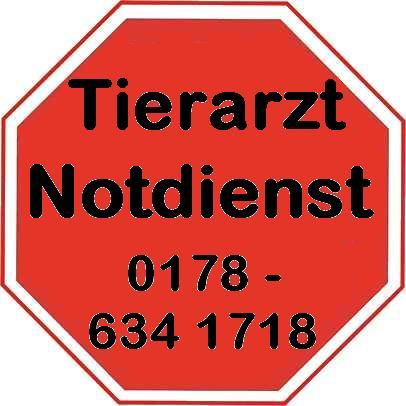 Tier Infos & Tier News @ Tier-News-247.de | Tierarzt Notdienst für Kleintiere & Reptilien