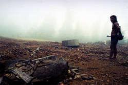 Asien News & Asien Infos & Asien Tipps @ Asien-123.de | Foto:Die Wälder der Penan wurden von Holzfällern zerstört. ©Andy & Nick Rain/ Survival.